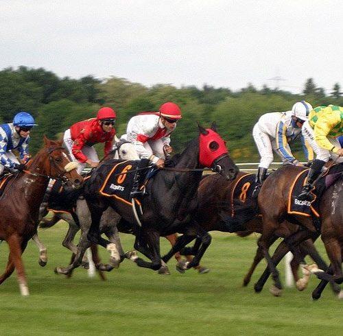 Auf mehr Pferde ( Keywörter ) setzen beim Onlinemarketing !